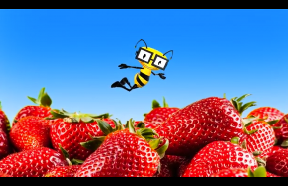 Vitamin Bee ® New Food Episodes